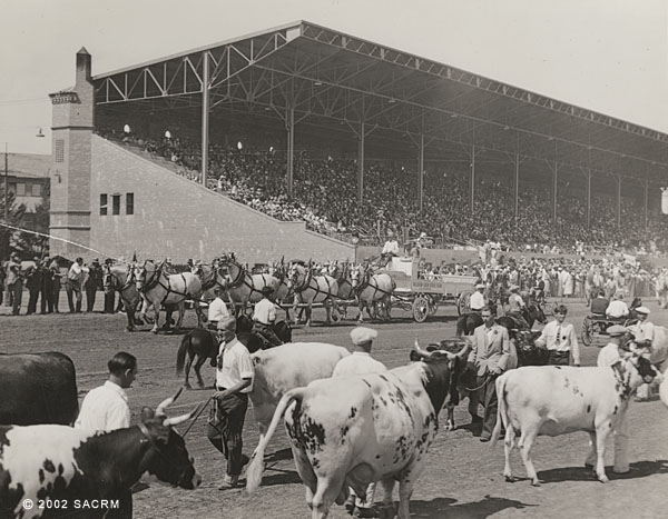 [California State Fair Livestock Exhibition]