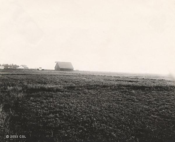 [Alfalfa field and barn]