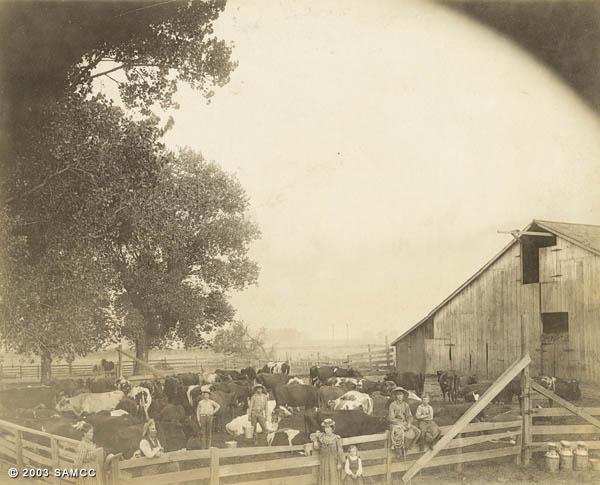 Wiseman family ranch, Sacramento