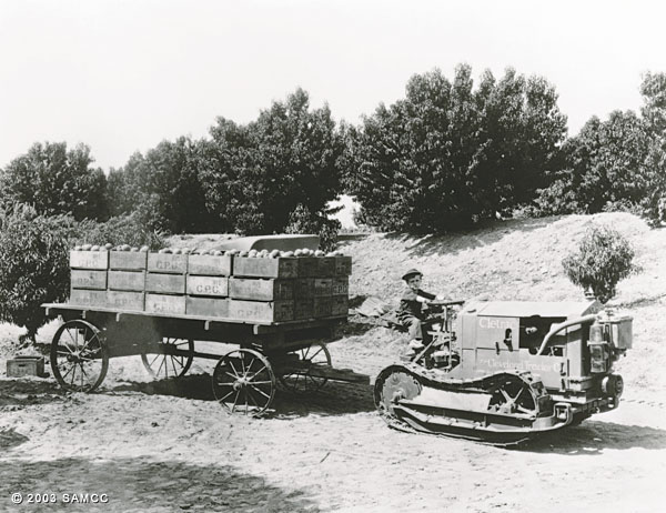Crates of peaches on a flat bed wagon
