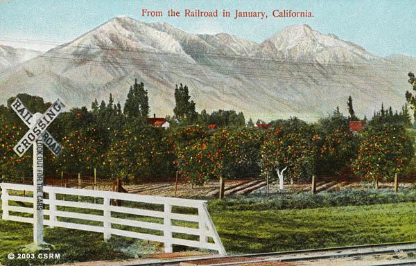 [Fruit orchard alongside railroad right of way]